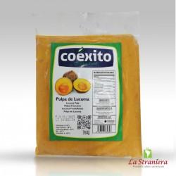Polpa surgelata di Lucuma, Coexito 250GR (Solo Torino(TO))