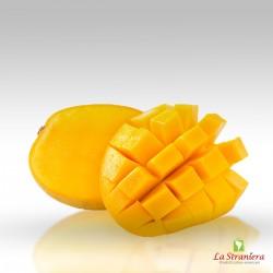 Frutto di Mango