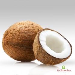 Cocco Fruta, Coco ,Coconut Fruit, prezzo per unitá